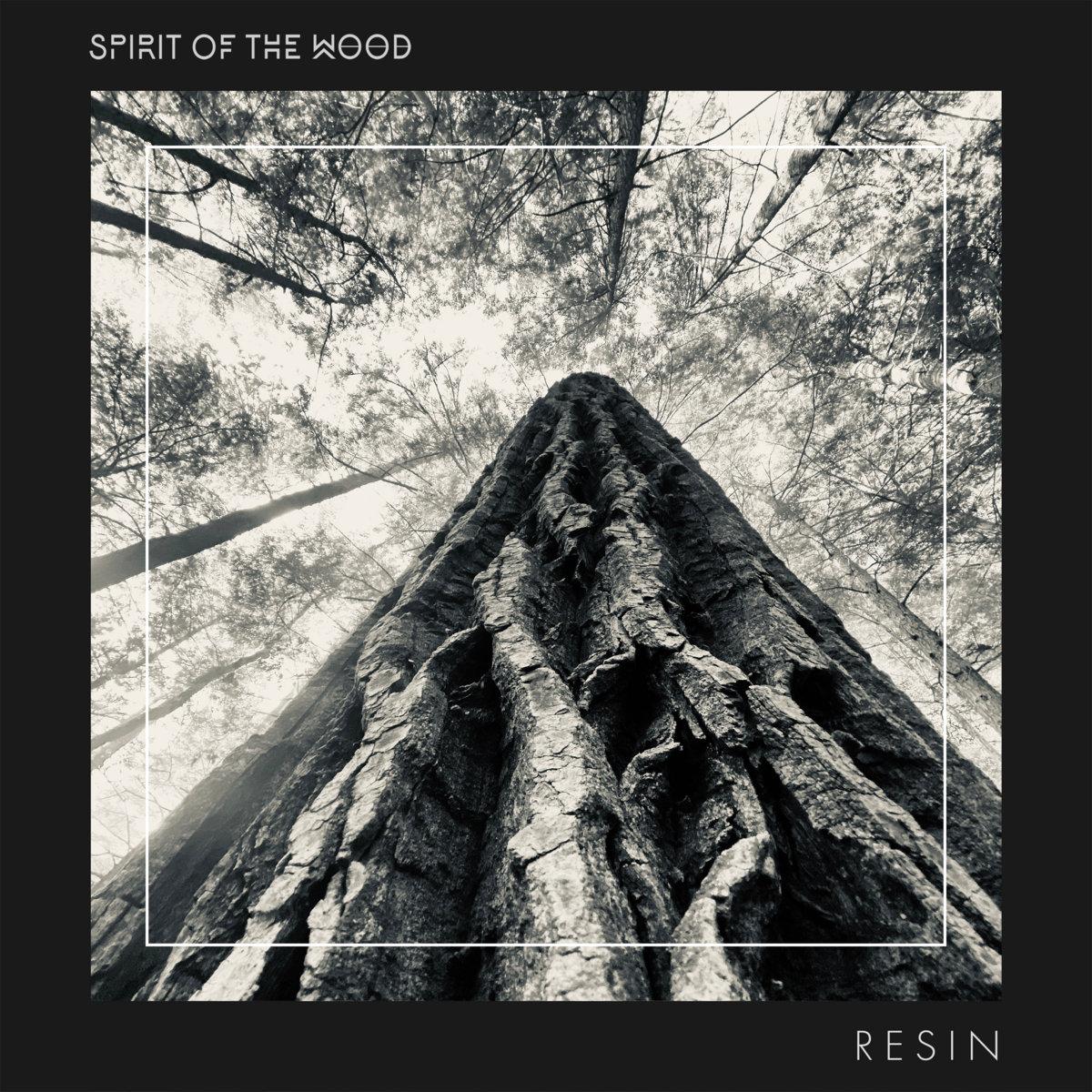Spirit of the Wood - Resin - Single Artwork